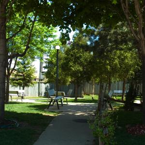 Pinewood Gardens Image 4